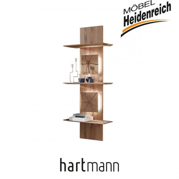 Hartmann Caya - 7170-9079 Regalelement