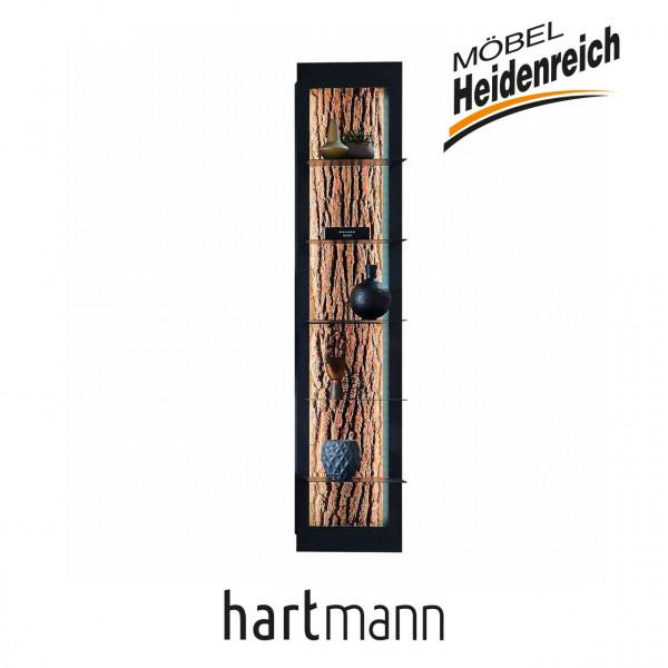 Hartmann Runa - Regalelement 8140-0031